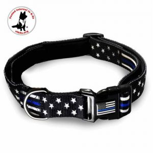 TBL-Dog-Collar-AM